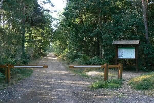 Forêt Evreux